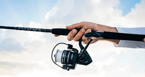 Types of fishing reel